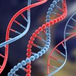 poznaj-profil-gnetyczny-dna
